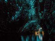 Du lịch - Lạc giữa hang động đom đóm kỳ ảo ở New Zealand
