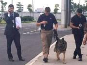 Chó nghiệp vụ theo bảo vệ TT Obama mang hàm Đại úy