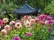 Du lịch - Những khu vườn đẹp tựa thiên đường trong mùa hè