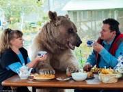 """Phi thường - kỳ quặc - Gia đình Nga sống cùng chú gấu """"đô vật"""" 140kg, cao 2,1m"""