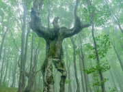 Thế giới - Cây sồi 20m có hình dáng như người ở Bulgaria