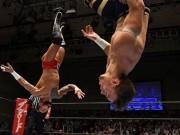 Thể thao - Bay lượn như chim ở trận đấu vật Nhật Bản