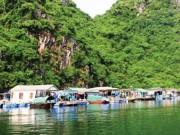 Du lịch - Về làng chài cổ, đẹp nhất thế giới ở vịnh Hạ Long