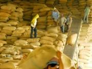 Thị trường - Tiêu dùng - Trung Quốc kiểm soát ngặt gạo Việt Nam