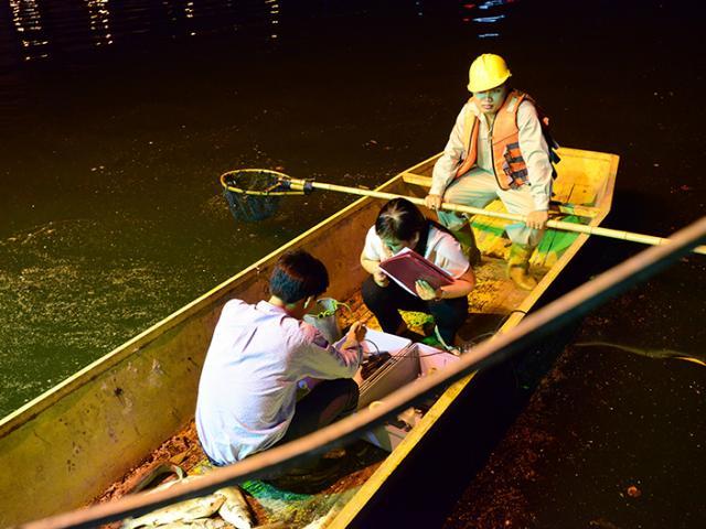 Trắng đêm vớt cá, sục oxy làm sạch hồ Hoàng Cầu
