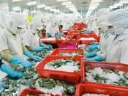 Thị trường - Tiêu dùng - Vượt Thái Lan, Việt Nam đứng đầu thế giới xuất khẩu tôm