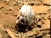 Phi thường - kỳ quặc - Phát hiện vật thể hình sọ quái vật trên sao Hỏa