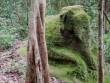 Lộ hàng loạt thành phố trung cổ trong rừng Campuchia