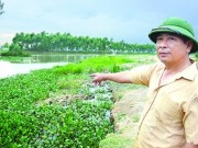 Tin tức trong ngày - Gặp người hùng cứu 11 học sinh đuối nước trên kênh nhà Lê