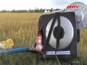 Thị trường - Tiêu dùng - Độc đáo máy bắt chuột từ ớt bột và bình gas mini