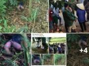 An ninh Xã hội - Phát hiện thi thể bé gái 3 tuổi phân hủy trong bụi tre