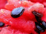 Sức khỏe đời sống - Làm nước giải khát bổ dưỡng cho ngày nắng nóng từ hạt dưa hấu