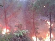 Tin tức trong ngày - Chữa cháy rừng, bí thư xã gãy tay, cán bộ địa chính ngất xỉu