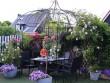 Khu vườn đẹp như thiên đường của mẹ Việt ở Hà Lan