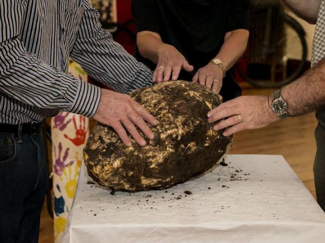 Tìm thấy bơ 2.000 năm tuổi vẫn ăn được