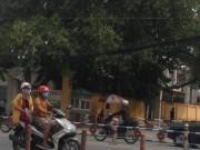 An ninh Xã hội - Nhậu say, Sơn Tinh giết nhầm bạn