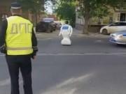 Công nghệ thông tin - Nga: Robot trốn khỏi phòng thí nghiệm rong chơi trên phố