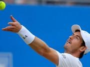 Murray - Cilic: Căng thẳng trong 3 set (BK Aegon)