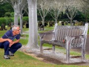 Phi thường - kỳ quặc - Anh: Hàng nghìn sâu bướm phủ trắng cây cối nghĩa trang