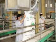 Thị trường - Tiêu dùng - Hoàng Anh Gia Lai được miễn thuế nhập khẩu đường từ Lào