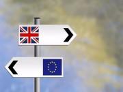 Thế giới - [Đồ họa] Toàn cảnh cuộc trưng cầu nước Anh rời bỏ EU