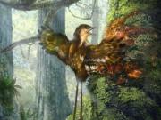 Thế giới - Cánh chim 60 triệu năm trước nguyên vẹn như còn sống