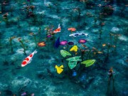 Du lịch - Mùa mưa Nhật Bản đẹp tựa tranh vẽ