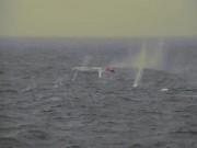 Thế giới - Lính Mỹ bắn trăm phát đạn không hạ nổi chiếc thuyền con