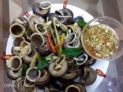 Ẩm thực - Ngon, lạ ốc núi Mai Châu hấp bia