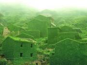 Du lịch - Ngôi làng phủ kín dây leo giữa đảo hoang