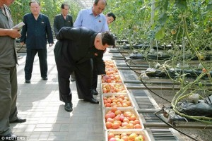 Tin tức trong ngày - Ám ảnh ngộ độc, ông Kim Jong-un bắt soi rau bằng kính hiển vi