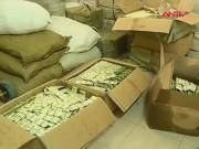 Video An ninh - Phát hiện gần 1 triệu bao cao su rởm tại Hà Nội