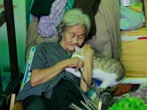 Bạn trẻ - Cuộc sống - Cụ bà bán rau khắc khổ chỉ biết làm bạn với chó mèo