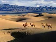 Du lịch - Những trải nghiệm tuyệt vời chỉ có ở Mông Cổ
