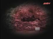 Vụ án nổi tiếng - Truy tìm hung thủ giết người, đốt xác ngày cận Tết (P.1)