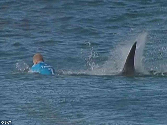 Hãi hùng: VĐV lướt sóng vật lộn với cá mập