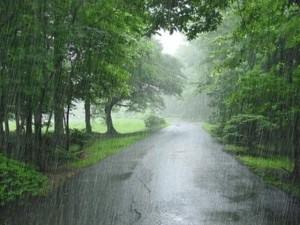 Tin thời tiết - Đông Bắc Bộ mưa giảm dần, trời se lạnh