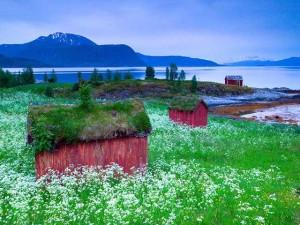 Phi thường - kỳ quặc - 16 kiến trúc tuyệt tác tựa cổ tích ở Na Uy