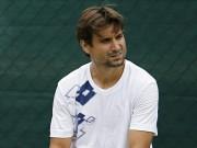 """Thể thao - David Ferrer: """"Cánh chim không mỏi"""" tennis thế giới"""