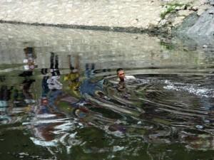 Tin tức Việt Nam - Trộm bơi sông Tô Lịch bỏ trốn, công an chèo thuyền truy bắt