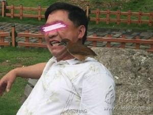 Doanh nhân - Đại gia Trung Quốc: Dùng chim để... xỉa răng