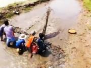 Du lịch Việt Nam - Tát vọt bắt cá ngày hè ở Nam Định