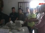 Bản tin 113 - Triệt phá đường dây xuyên quốc gia, thu 5,5 tấn ma túy