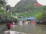 Bản tin 113 - Mưa lũ ở Quảng Ninh: 13 người chết, 4 người mất tích