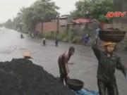 Clip: Người Quảng Ninh liều mạng vớt than trong lũ