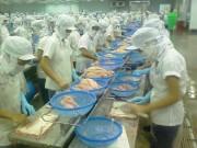 Xuất nhập khẩu - Bản tin tài chính kinh doanh 03/08: DN thủy sản lao đao vì USD tăng đột biến