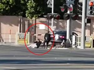 Tin tức trong ngày - Mỹ: Cảnh sát liều mình cứu tài xế say xỉn trên đường tàu