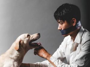 Hậu trường phim - Quang Đăng bịt miệng, kêu gọi ngừng ngược đãi loài chó
