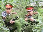 """Phim - Điểm danh các phim hình sự Việt Nam """"hot"""" gần đây"""