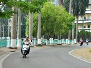 Ngắm phố mới mang tên Nguyễn Đình Thi, Trịnh Công Sơn ở HN